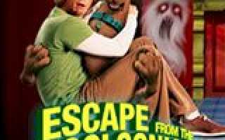 Scooby-Doo 2 (Escape From The Coolsonian)игры